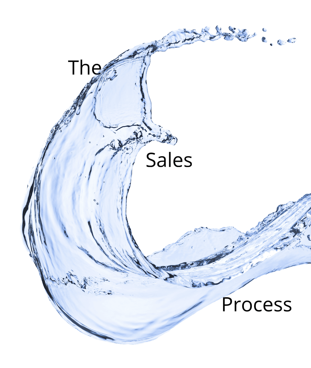 The Franchise Sales Process